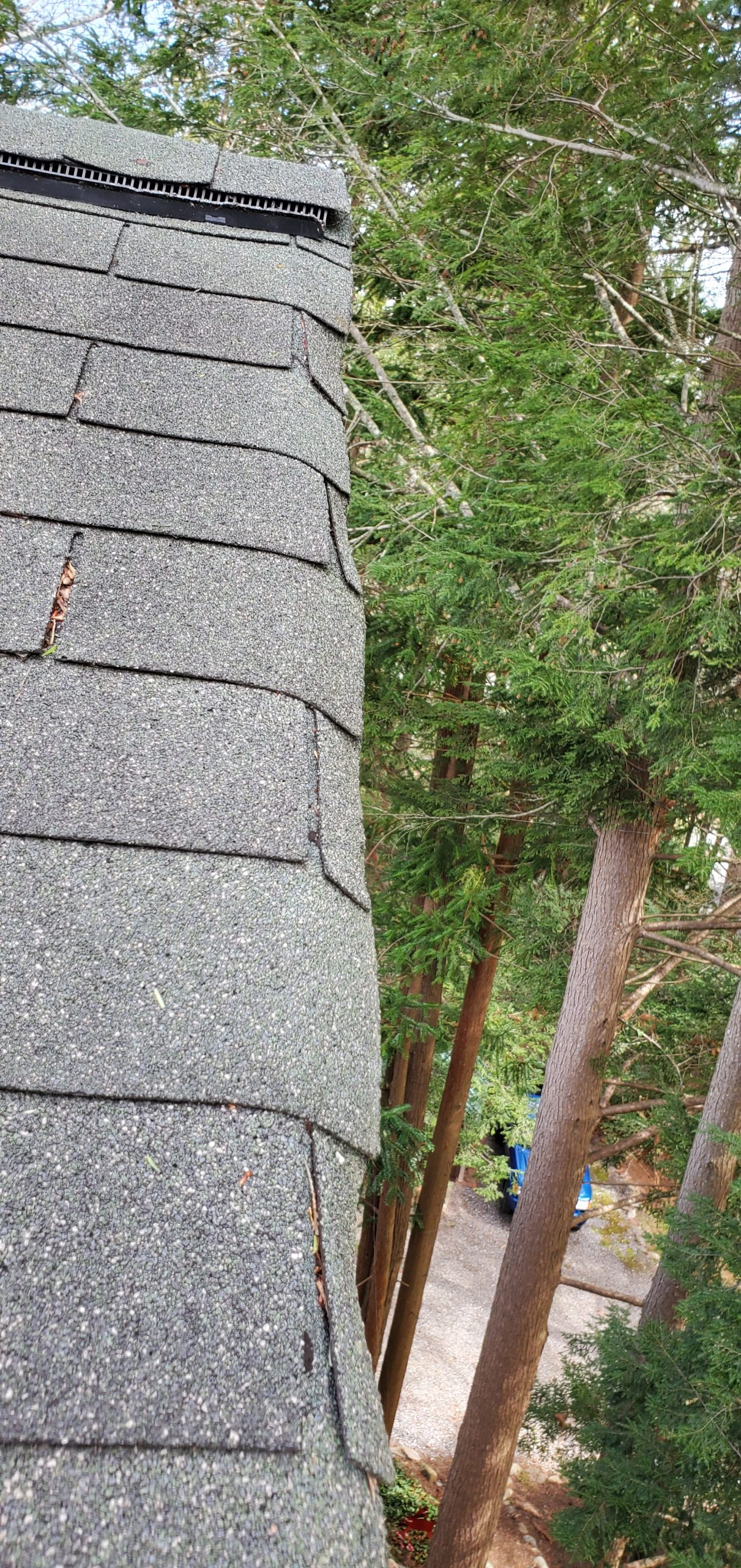 Shingles are holding water